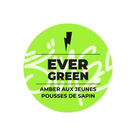Les Singes Savants - Evergreen  33CL